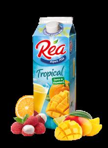 REA_TROPICAL-300x409